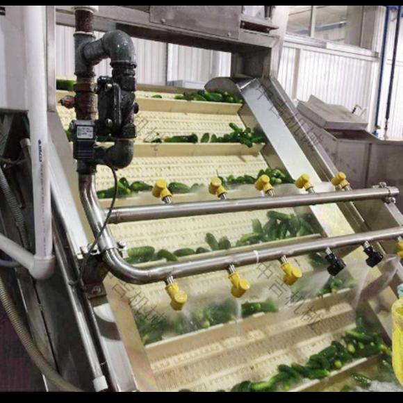 黄瓜泡菜生产线