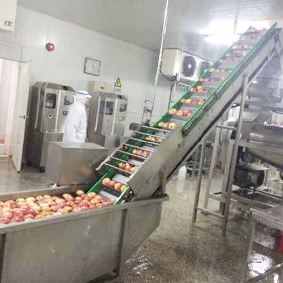 HPP苹果汁生产线