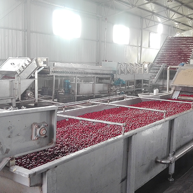 浓缩枣汁生产线